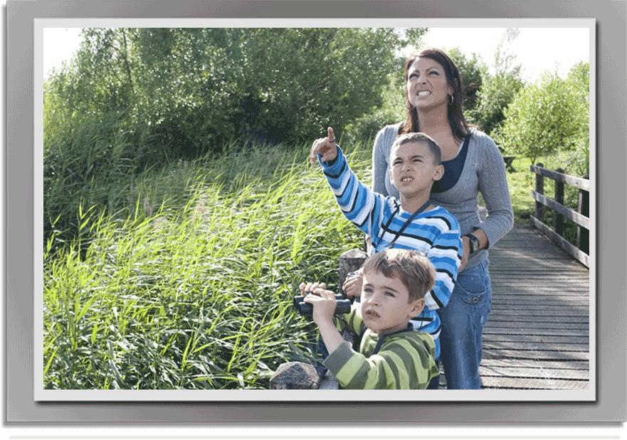 Family_Birdwatching