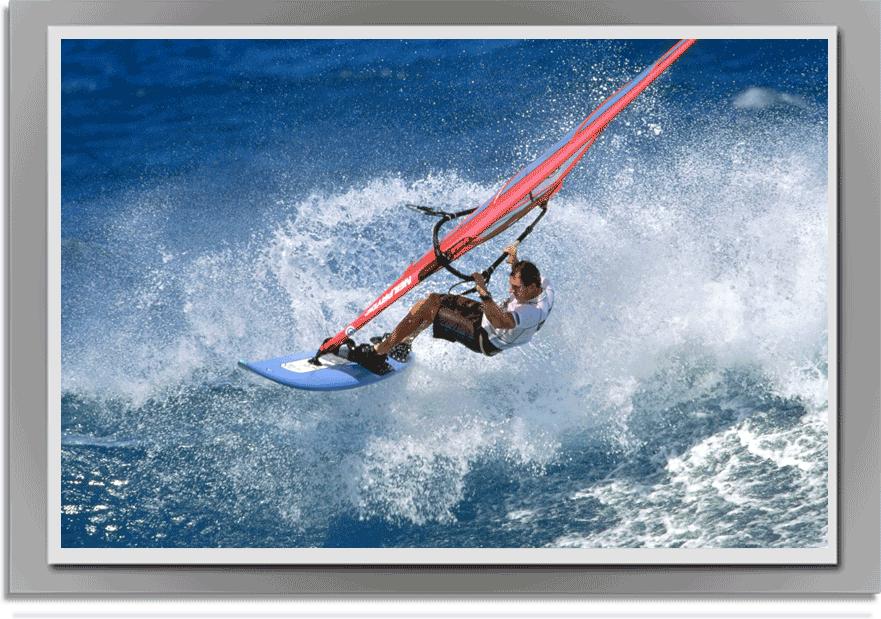 stag_wind-surfing