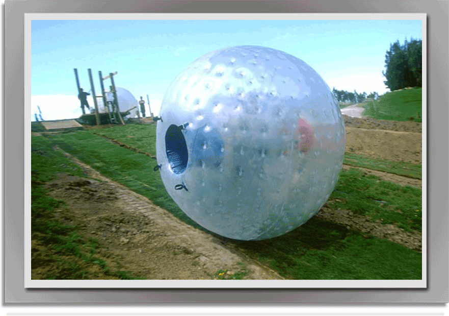 stag_zorbing